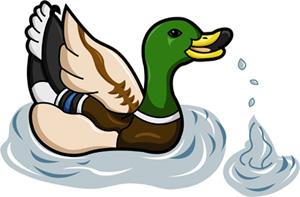 Duck by nancy-kelpie