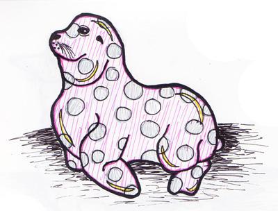 Sea lion sketch