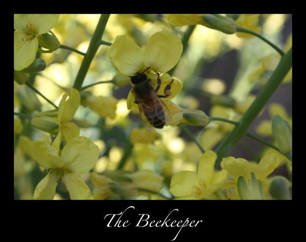 The Beekeeper by rruthwong