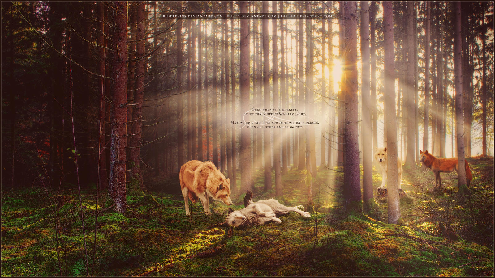 Be A Light by riddlekins