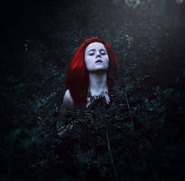 blood in my dream. by cristina-otero