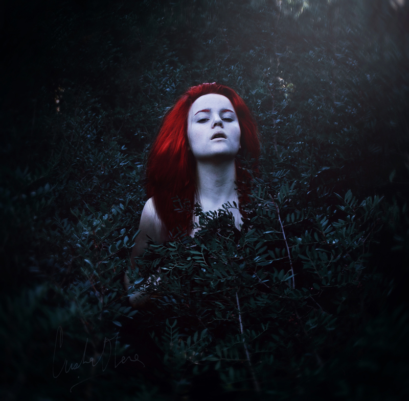 blood in my dream. by Senju-HiMe