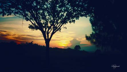 Sunrice by muhadi65