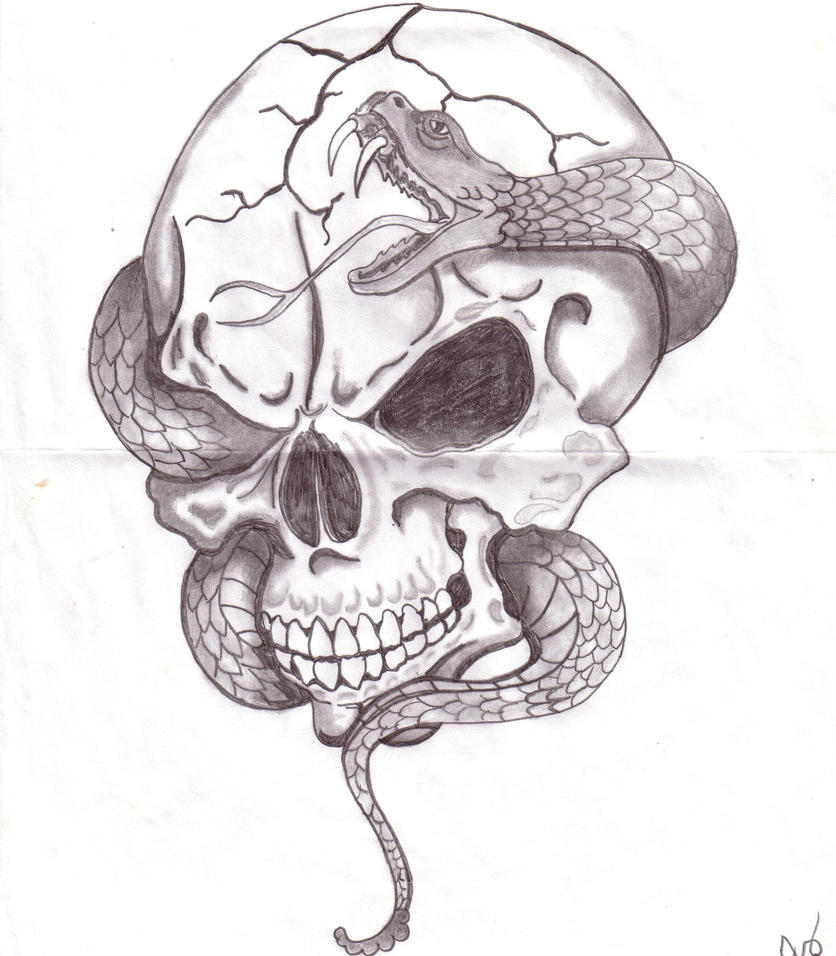 Skull with Snake by glsellers1 on DeviantArt