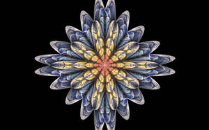 Splitssquish4 by fractal2cry