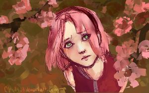 Sakura by chu0403
