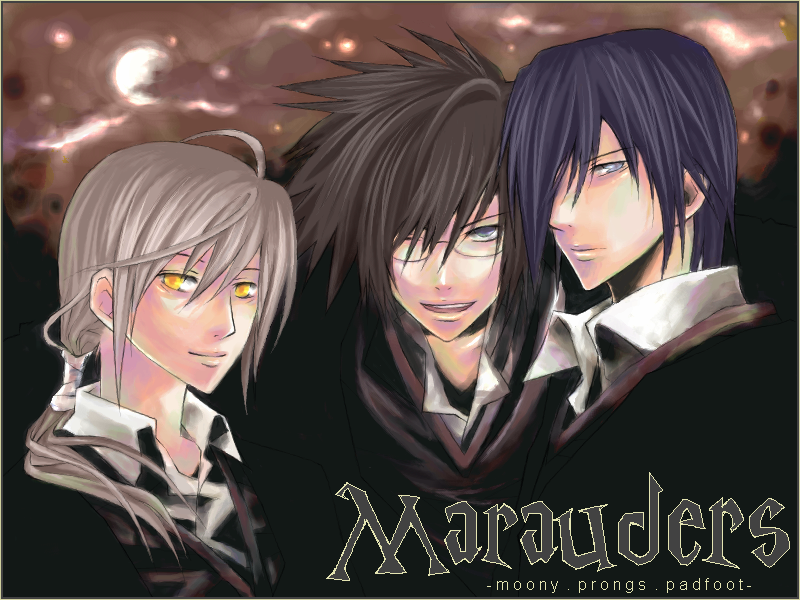 Marauders, minus Peter. by tea-garden