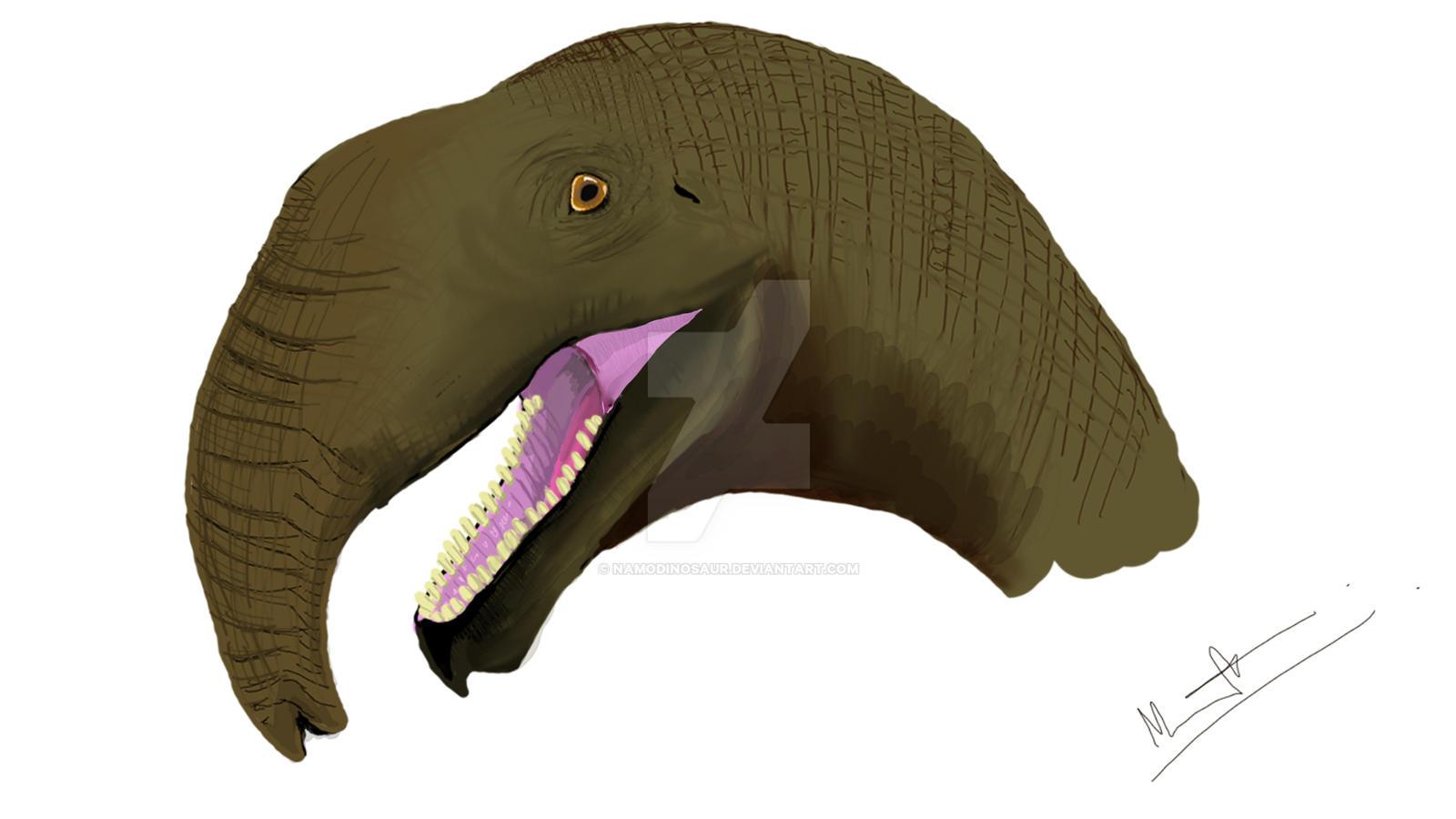 brachiosaurus_trunk_theory_by_namodinosaur_d7e8xuy-fullview.jpg?token=eyJ0eXAiOiJKV1QiLCJhbGciOiJIUzI1NiJ9.eyJzdWIiOiJ1cm46YXBwOiIsImlzcyI6InVybjphcHA6Iiwib2JqIjpbW3sicGF0aCI6IlwvZlwvOGU1MDcyNTEtYzRlNy00YjAyLTkyNDgtMWZiZGVhYjlmM2ZkXC9kN2U4eHV5LTVkYWU5YzIzLTUzMWUtNGM5Yy04YzFiLWNlYjIwM2U3NDAwMi5qcGciLCJoZWlnaHQiOiI8PTkwMCIsIndpZHRoIjoiPD0xNjAwIn1dXSwiYXVkIjpbInVybjpzZXJ2aWNlOmltYWdlLndhdGVybWFyayJdLCJ3bWsiOnsicGF0aCI6Ilwvd21cLzhlNTA3MjUxLWM0ZTctNGIwMi05MjQ4LTFmYmRlYWI5ZjNmZFwvbmFtb2Rpbm9zYXVyLTQucG5nIiwib3BhY2l0eSI6OTUsInByb3BvcnRpb25zIjowLjQ1LCJncmF2aXR5IjoiY2VudGVyIn19.K-lsEDzSMInBezpP19-hvnJ4ovE9CDkjesZ-edgGU8M