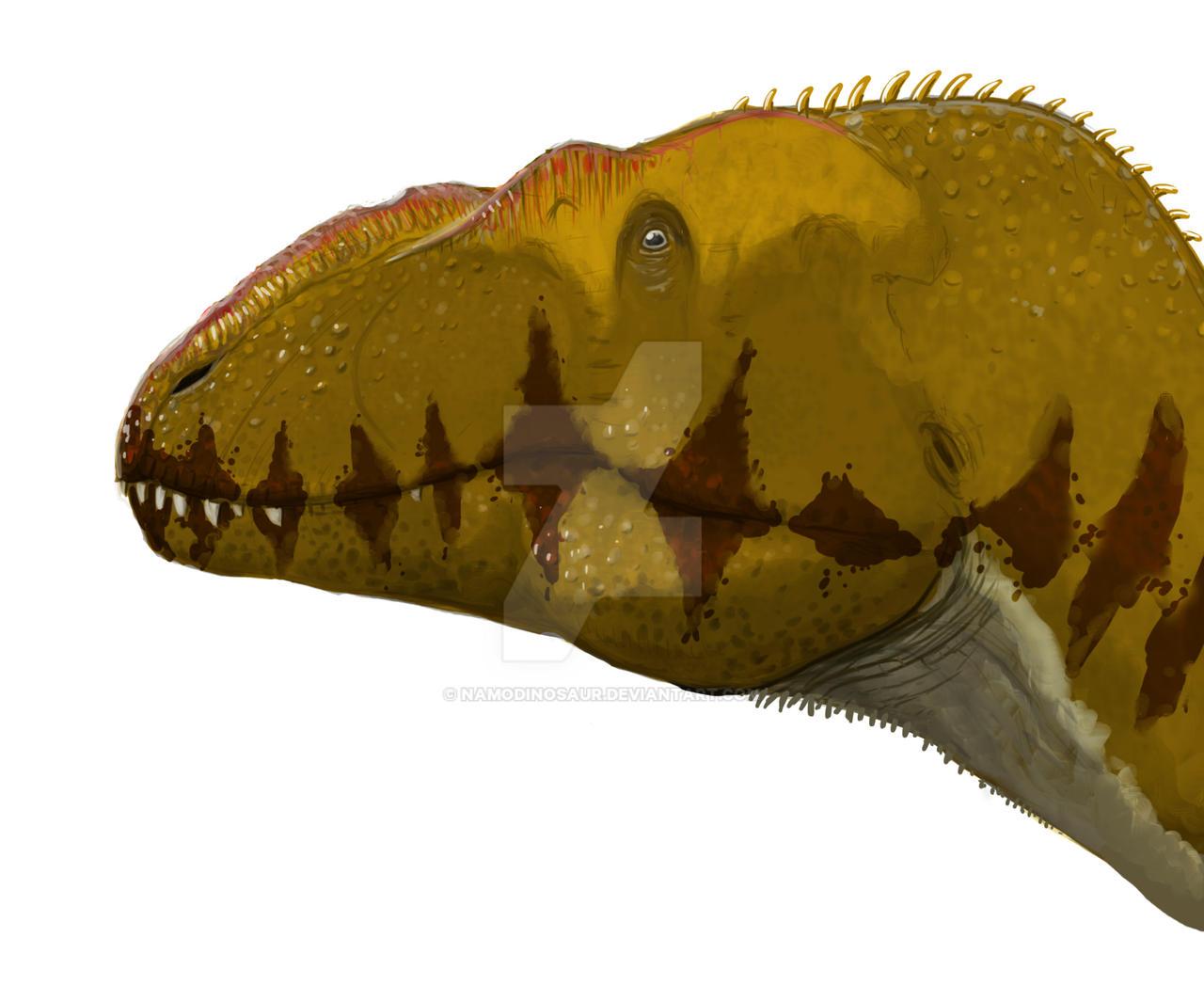 Siamotyrannus Head by namodinosaur on DeviantArt