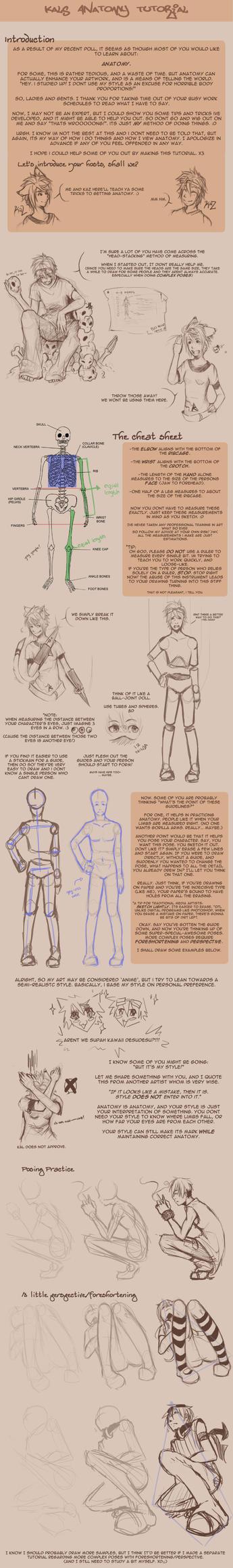 Anatomy Tutorial by owdof