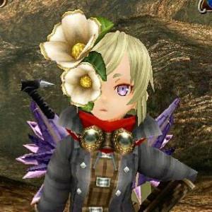 sorachanii's Profile Picture