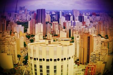 Sao Paulo experiment