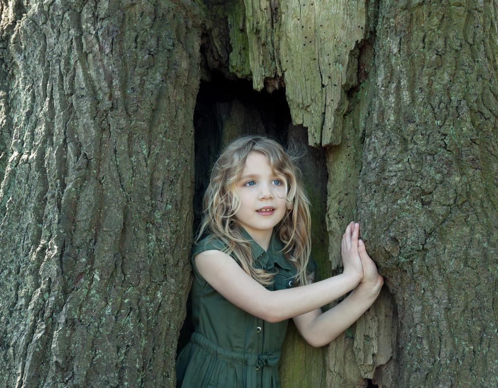 Tree Nymph by Wrightam
