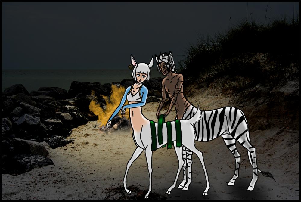 Pin Okapi Half Zebra Giraffe 1jpg on Pinterest