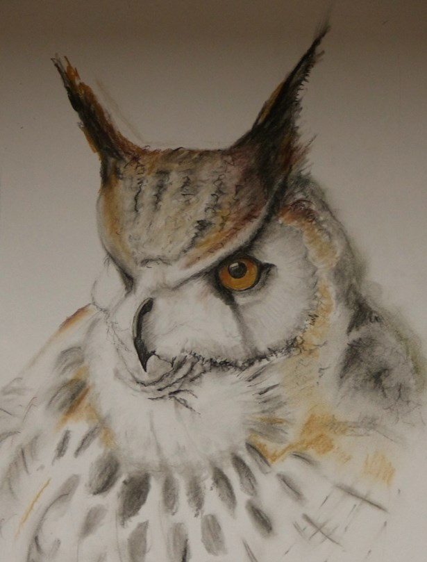 Eagle Owl in Tinted Charcoal by Jills-Designs