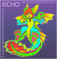 Playful Echo *NOT MY ART*