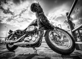 Harley Davidson 3 by Vitaloverdose
