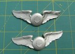 Commissar Wings. IGSP Badge by DefenderHecht