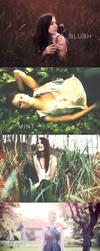 Vintage Autumn PS Photo Actions by frozencolor
