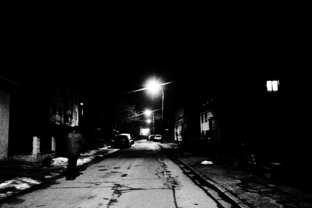 Nightwalk by Druid-CZ