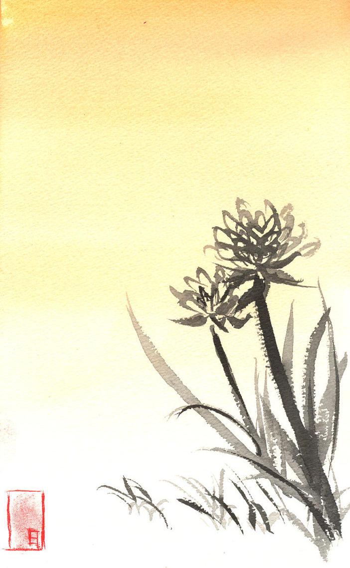 Kiku chrysanthemum japan symbol kusuyama kiku biocorpaavc