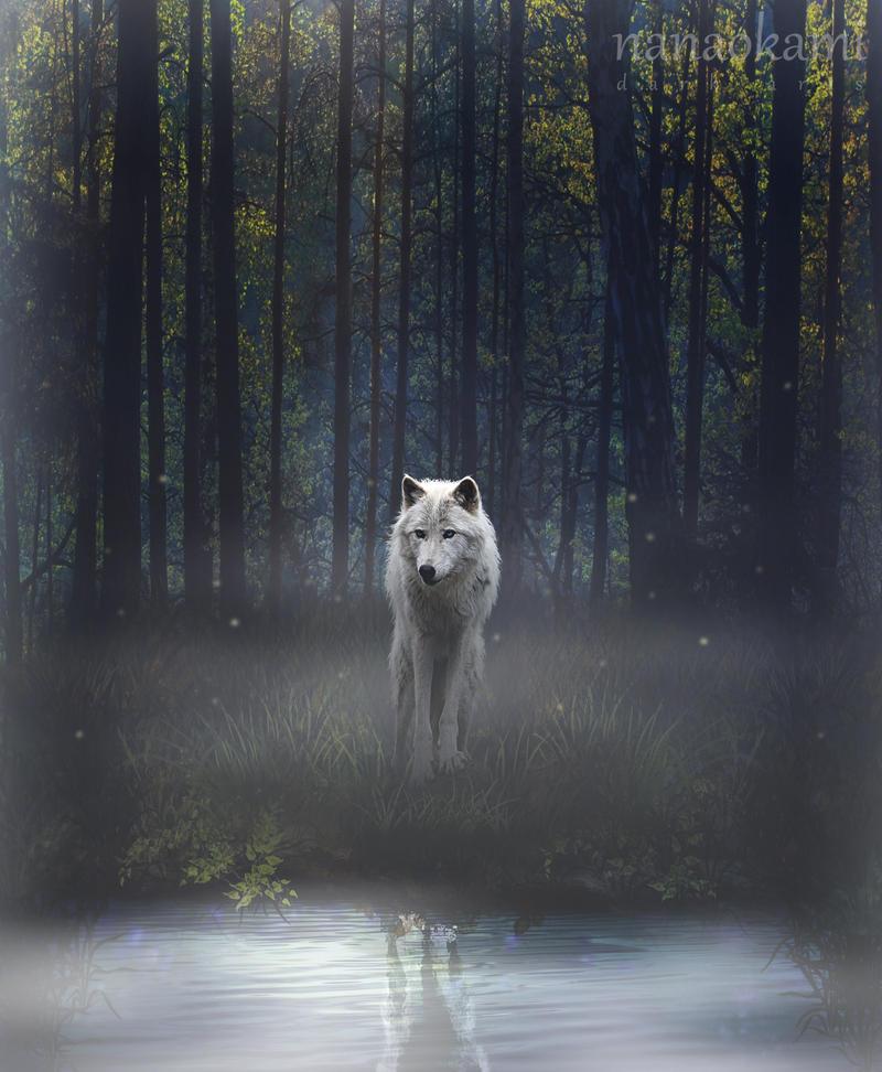 Image Result For Wolf Pack Dog