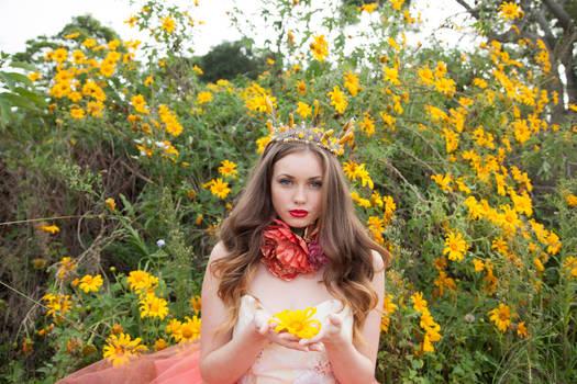 Melina Hollway Photography stock #2