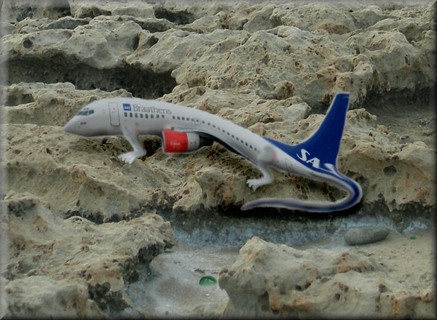 Aeroplane Porn 22