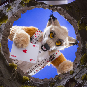 Muddy-The-Fox's Profile Picture