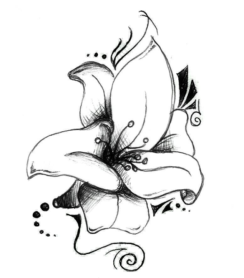 Real Lily by glidderbug
