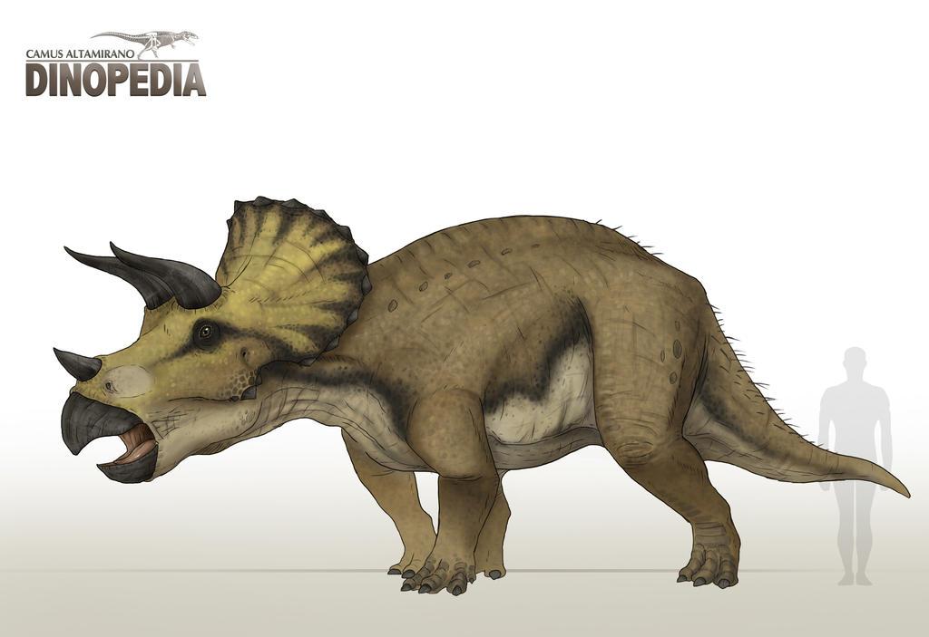 Triceratops horridus by CamusAltamirano