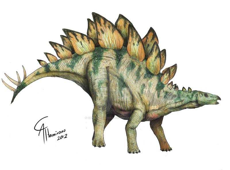 Stegosaurus Armatus By Camusaltamirano On Deviantart