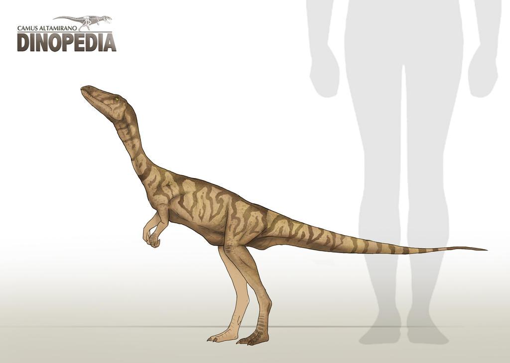 Segisaurus halli by CamusAltamirano