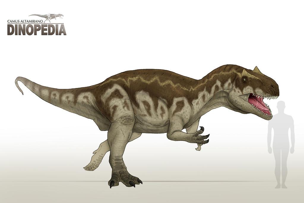 allosaurus fragilis by camusaltamirano on deviantart