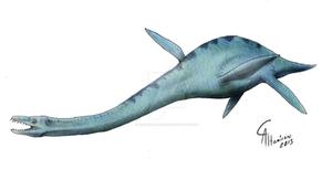 Elasmosaurus platyurus
