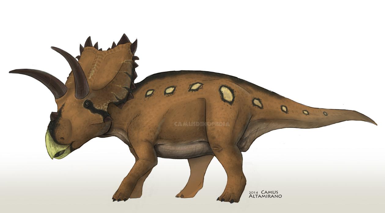 Coahuilaceratops magnacuerna by CamusAltamirano