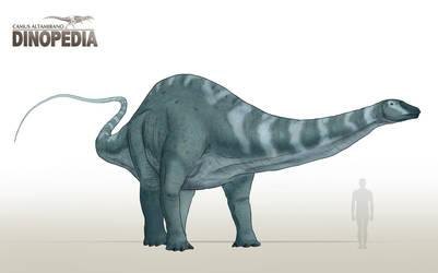 Apatosaurus ajax