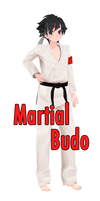 [mmd and ys] TDA Martial Budo by FiciAxe