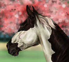 The Cherry Blossom Horse