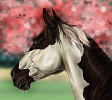 The Cherry Blossom Horse