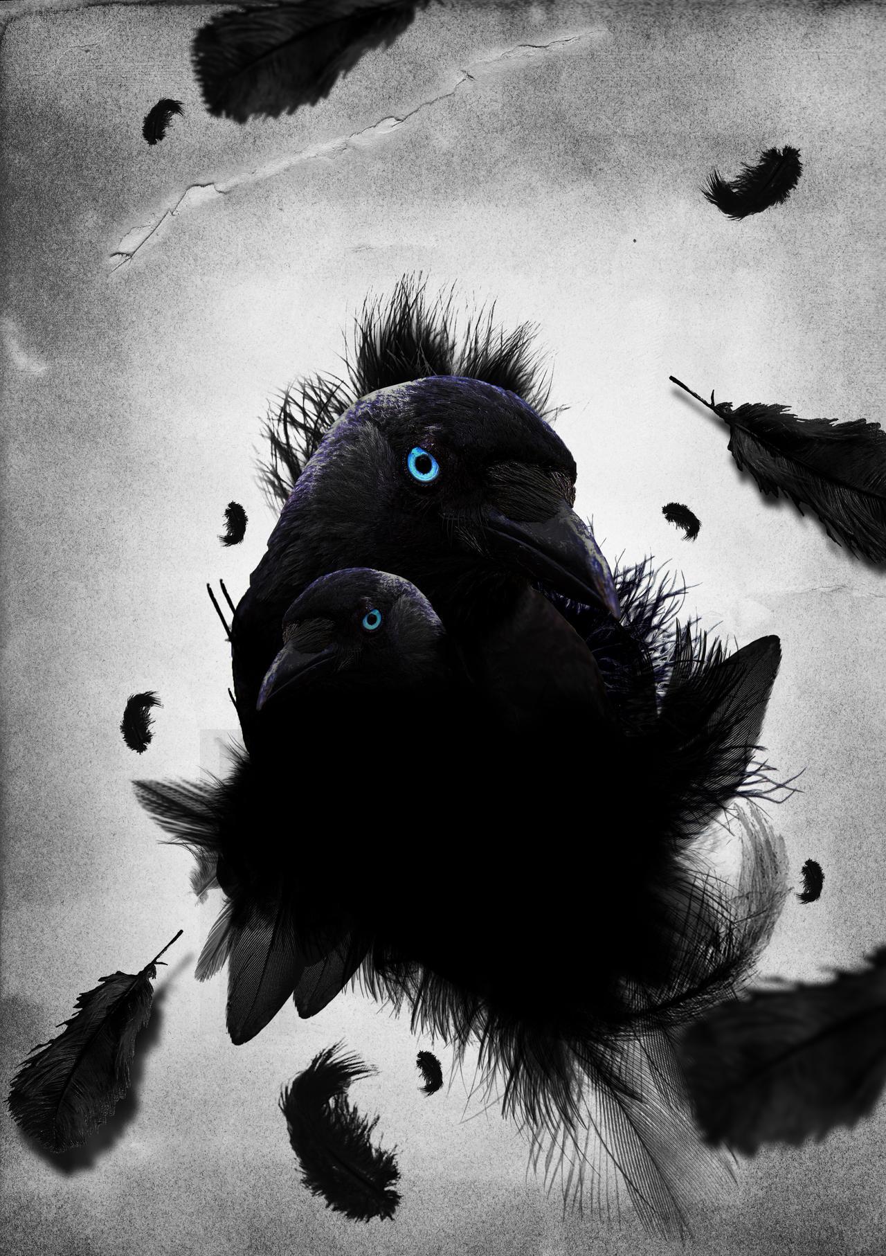 holly-crows akadémia- szerepjáték