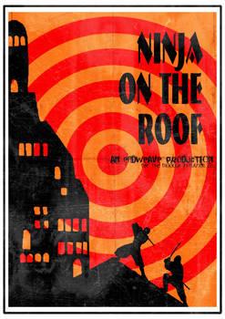 ninja on the roof
