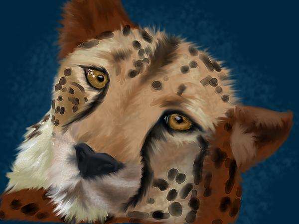 Cheetah by Tinkerbelle360