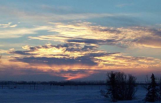 Winter Sky II