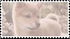 shiba inu stamp #5