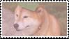 shiba inu stamp #6