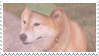 shiba inu stamp #6 by stratosqueer