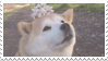 shiba inu stamp #8 by stratosqueer
