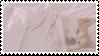 shiba inu stamp #10