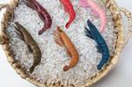 Leather prawn brooch